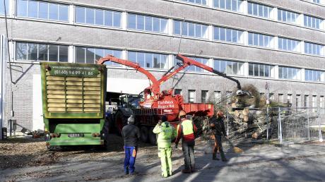 Mehrere Bäume sind am Freitagmorgen im Stadtjägerviertel gefällt worden. Das ehemalige Telegrafenamt soll in Wohnungen umgebaut werden.