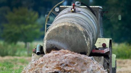 Ein Bauer hat in der Gemeinde Hohenwart Gülle in seinem Wald ausgebracht. Jetzt ermittelt die Polizei.