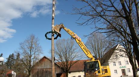 Der Maibaum in Oberottmarshausen drohte umzukippen und musste von einem Bagger abgestützt werden.