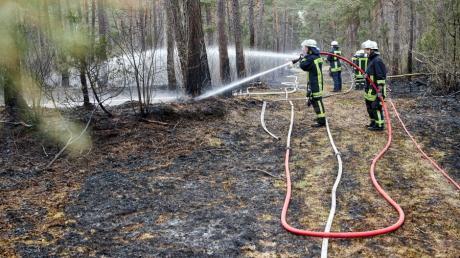 Berufsfeuerwehr und einige Freiwillige Feuerwehren der Stadt Augsburg waren beim Waldbrand im Augsburger Stadtwald im Einsatz.