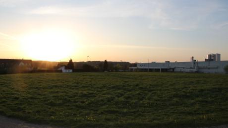 Auf der Wiese im Vordergrund könnten die Mang-Werke ihre Produktion erweitern. Östlich des bisherigen Standorts (rechts im Bild) könnte ein Logistikzentrum entstehen.