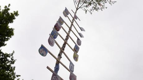 Der zehn Meter hohe Maibaum der Stiftersiedlung in Gersthofen hat das Voting gewonnen.