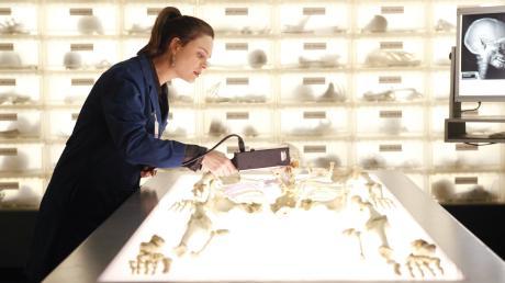 """Alles zu """"Bones – Die Knochenjägerin"""", lesen Sie hier: Sendetermine, Schauspieler und Übertragung im TV und Stream."""