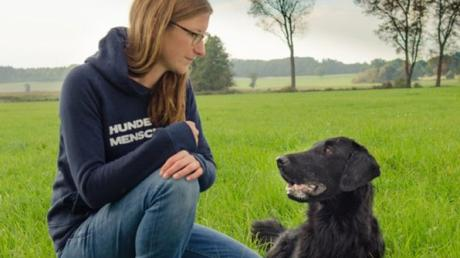 Die Eröffnung einer Hundeschule in der Gemeinde Bibertal spaltet den Gemeinderat.