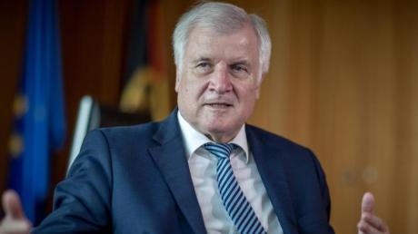 Die AfD hat erfolgreich gegen Horst Seehofer geklagt.