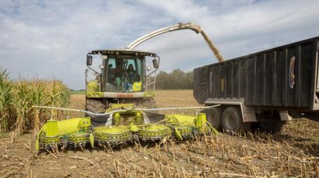 Immer wieder steht die Arbeit von Landwirten in der Kritik.