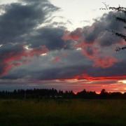 Wolken und Sonne wechseln in diesen Tagen schnell. Der Abendhimmel wird farbig, wenn am westlichen Horizont die Sonne ihre letzten Strahlen in die Wolken schickt. Eugen Schmitz nahm dieses Bild von Bobingen Nord aus in Richtung Westliche Wälder auf.