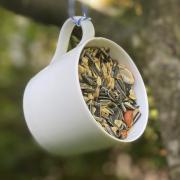 Eine Tasse als Vogelbuffet - hier erfahren Sie, wie das funktioniert.