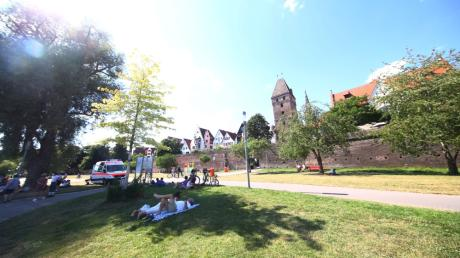 Die Donauwiese am Metzgerturm in Ulm ist ein beliebter Treffpunkt.