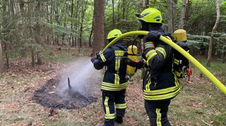 Ein Trupp unter schwerem Atemschutz löschte im Herrenwald einen Kleinbrand.