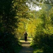 Joggerinnen sollten im Siebentischwald in Augsburg weiterhin wachsam sein.