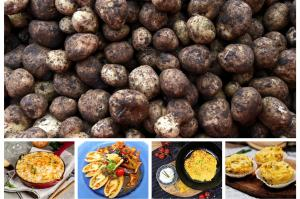 Die Kartoffel: In unterschiedlichen Formen, Gewürzen und Gerichten nach im Speiseplan vieler enthalten. Aber die Beliebtheit der Knolle sinkt. Woran liegt das?