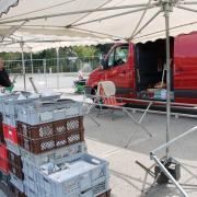 """Michaelimarkt """"light"""": Wie bereits im vergangenen Jahr bieten Händler auf dem Festplatz wieder ihre Waren an."""