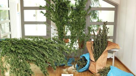 Bei Kirchheim im Unterallgäu hat die Polizei ein Drogenlabor und eine Cannabis-Plantage entdeckt.