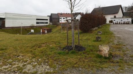 Noch ist nicht viel zu sehen von dem 9,5 Millionen Euro teuren Bau, der in der Bonstetter Ortsmitte entstehen soll.