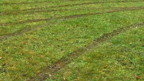 Mit tiefen Reifenspuren übersät ist der Pfadfinder-Zeltplatz auf dem ehemaligen Sportgelände am Ortsrand von Langenneufnach. Franz Settele und Wolfgang Häckl (von links) ärgern sich über den Vandalismus.