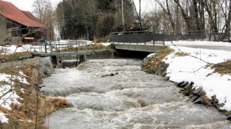 Bei Starkregen oder Schneeschmelze kann die Singold zu einem reißenden Fluss werden, wie hier am Langerringer Urbanwehr im Januar 2019.