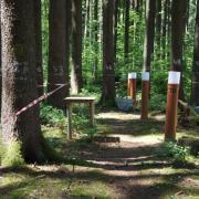 Die Waldklimastation ist eine Besonderheit des Höglwalds. Hierhin und zu acht weiteren interessanten Stationen soll der neue Erlebnispfad führen.