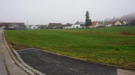 Auf dieser Fläche in Todtenweis soll das Baugebiet Kabisbach entstehen. Schräg durchs Bild verläuft der Kabisbach beziehungsweise Litzelbach.