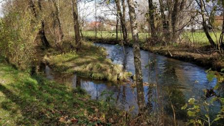Die Überschwemmungsgebiete der Paar und Steinach sollen neu festgesetzt werden - in Merching hatte der Rat große Bedenken.
