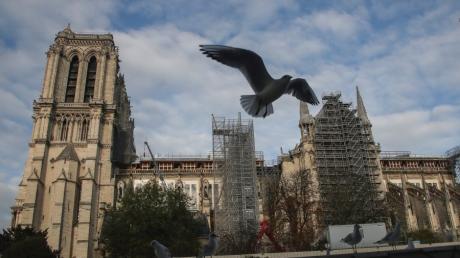 Die Kathedrale Notre-Dame wird wieder aufgebaut.