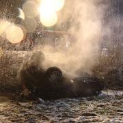 Ein Auto ist bei Jettingen-Scheppach ausgebrannt.
