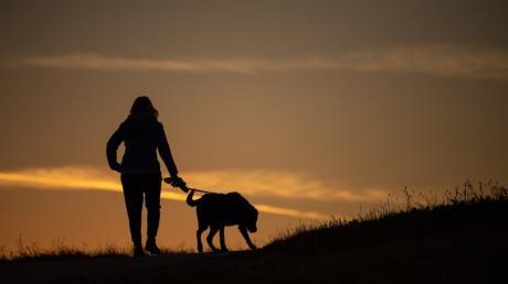 Eine Frau geht mit ihren drei Hunden in Haldenwang spazieren, dann kommt es zum Streit mit einem Mann. Der attackiert die Frau mit seinem Gehstock.