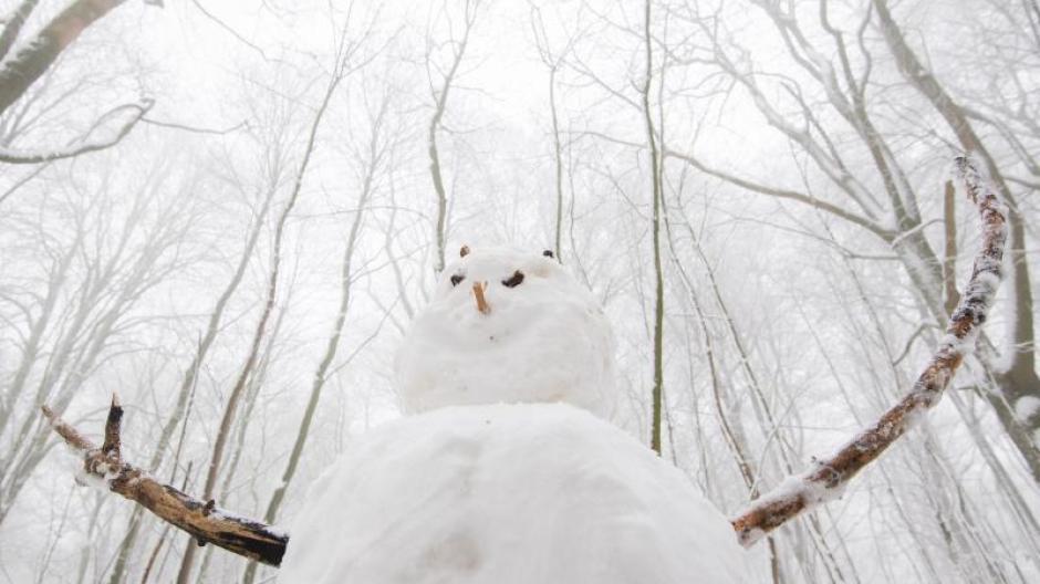 Ganz in weiß mit einer orangenen Nase steht der freundliche Schneemann im Wald am Nienstedter Pass im Deister.