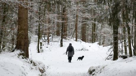 Eine Frau geht mit ihrem Hund durch den verschneiten Wald spazieren. Ab sofort gilt im Unterallgäu die 15-Kilometer-Regel.