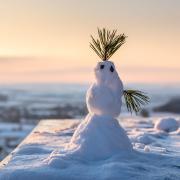 Dieses lustige Schneemännchen hat Harald Erdinger am Samstag auf dem Flachsberg bei Gosheim entdeckt – und zwar auf dem schneebedeckten Tisch an dem Aussichtspunkt, von dem aus man einen wunderschönen Blick ins Ries hat.