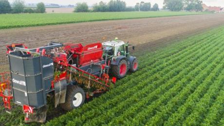 Ein Landwirt erntet Bio-Möhren auf einem Feld im Landkreis Hildesheim. Bund und Länder erzielten eine Einigung bei der Agrarreform.