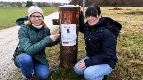 Wer hat etwas gesehen? Nicht nur mit Plakaten suchen (von links) Besitzerin Judith Wittmannn und Alexandra Schalk von der Hundestaffel nach der entlaufenen Hündin Baileys.