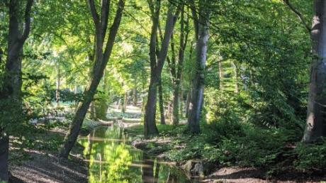Ein großes grünes Kleinod in der Stadt:  der Schwabmünchner Luitpoldpark, durch den die Singold fließt.