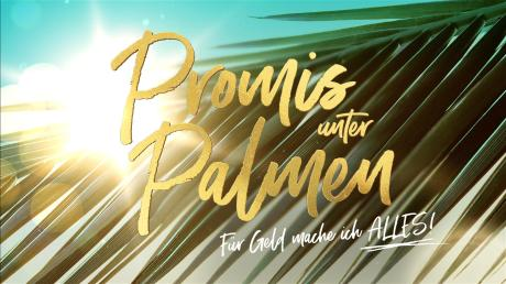 """Katy Bähm ist als Kandidatin in der neuen Staffel von """"Promis unter Palmen"""" dabei. Im Porträt lernen Sie die Drag-Queen näher kennen."""