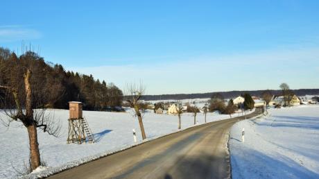 Die Baum-Allee zwischen Illereichen und Dattenhausen ist durch Rückschnitte arg in Mitleidenschaft gezogen. Die Bäume sollen gefällt und durch eine Neupflanzung ersetzt werden.