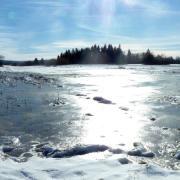 Winterlicher Eistag im Ried bei Obenhausen.