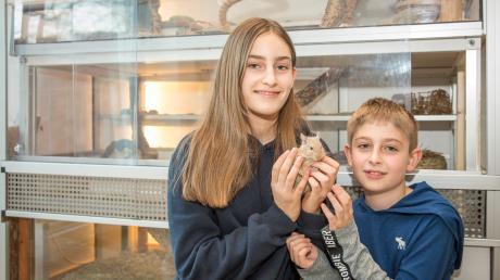 Lara und Lars Illig haben viel Freude an ihren ungewöhnlichen Haustieren.