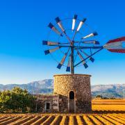 Diese Windmühle von Mallorca kann man sich schlecht nach Hause holen. Den Geschmack der Insel aber schon.