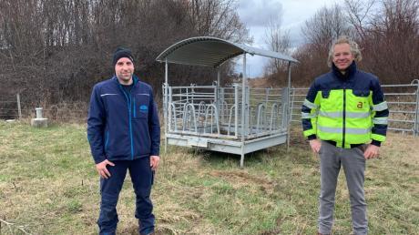 Beweider Karl Lechler (links) und Oliver Saga von der Beitreibergesellschaft autobahnplus A8. Am Mittwoch wurden Galloway-Rinder auf die Weide gebracht.
