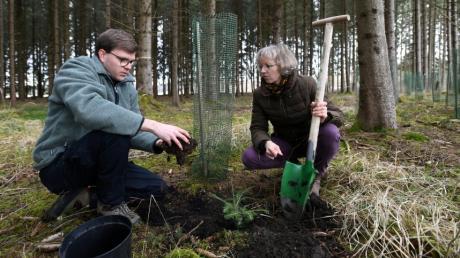 Gabi Kögel-Schütz ist eine der wenigen weiblichen Waldbesitzer im Landkreis Augsburg. Bei der Bewirtschaftung unterstützt sie Förster Lorenz Hochhauser.