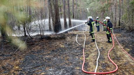 Berufsfeuerwehr und einige Freiwillige Feuerwehren der Stadt Augsburg waren beim Waldbrand im Stadtwald im Einsatz.