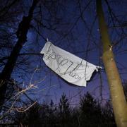 Klimaaktivistinnen kletterten am Freitagmorgen auf Bäume im Lohwald bei Meitingen, um ein Banner aufzuhängen. Mit der Aktion wollen sie eine Rohdung des Geländes verhindern.
