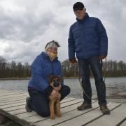 Brix ist ein drei Monate alter Schäferhund und sieht zum ersten Mal die Schwäne am Kuhsee, sagen Claudia und Mirko Fritz aus Neusäß.