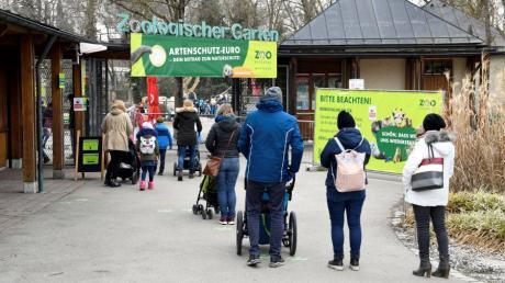 """Ab Mittwoch dürfen die Zoos in Bayern """"inzidenzunabhängig"""" öffnen. Beim Augsburger Zoo geht es nicht ganz so schnell."""