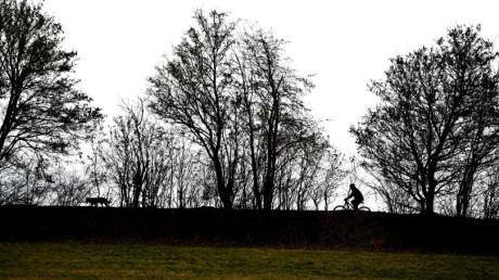 Der Landkreis verlost 1000 Bäume an frischgebackene Hausbesitzer.