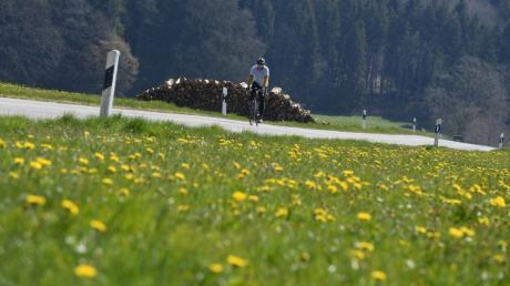 Sonne, blühende Wiesen - so macht es Spaß, mit dem Rennrad durch die Stauden zu biken.