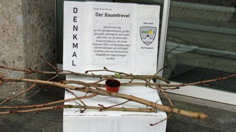 """Der """"Baumfrevel"""" von Bellenberg erhielt eine Erinnerungsstätte."""