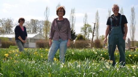 Veränderungen in Illertissen: Rita Joos-Ulrich (links) und Ursula Glöckler, die künftig den Gartenförderern vorstehen wollen, sowie Andreas Kiefer, der das Vorstandsgremium der Stiftung Gartenkultur verstärkt.
