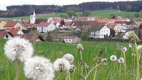 In Rinnenthal sollen sowohl Baulücken geschlossen wie auch Neubauflächen ausgewiesen werden.