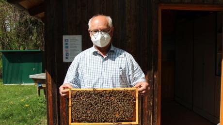 Karl-Heinz Waldmüller, Vorsitzender des Imkervereins Friedberg, kennt sich mit Bienen bestens aus.